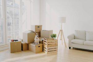 Wohnungsräumung Würenlos